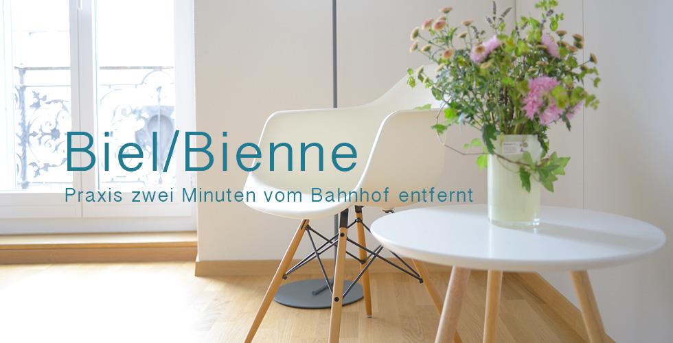 cabinet03_de